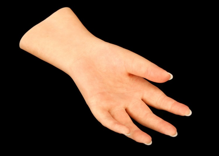 Palm side of the left cosmetic hand.